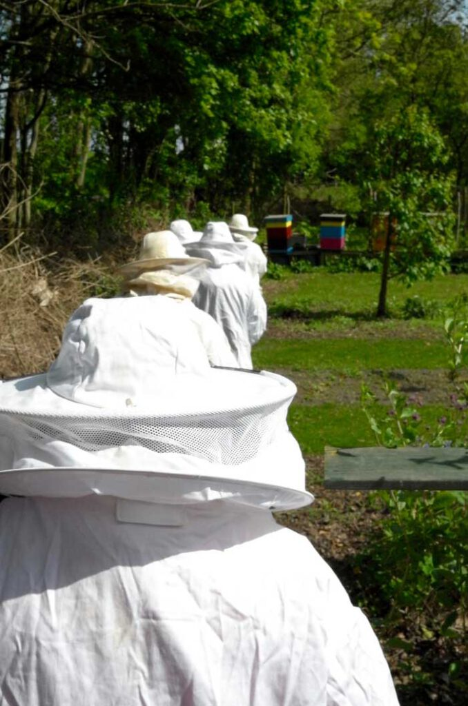 Kenningsmakings cursisten op pad | De Honingpot